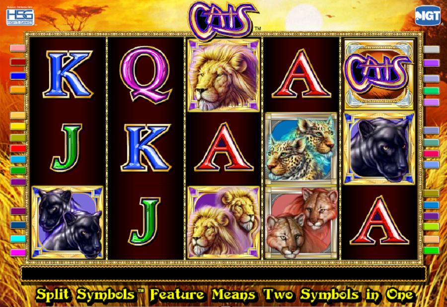 Las Vegas automaty Cats