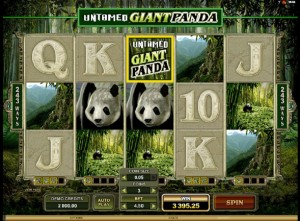 Giant Panda Slot Machine