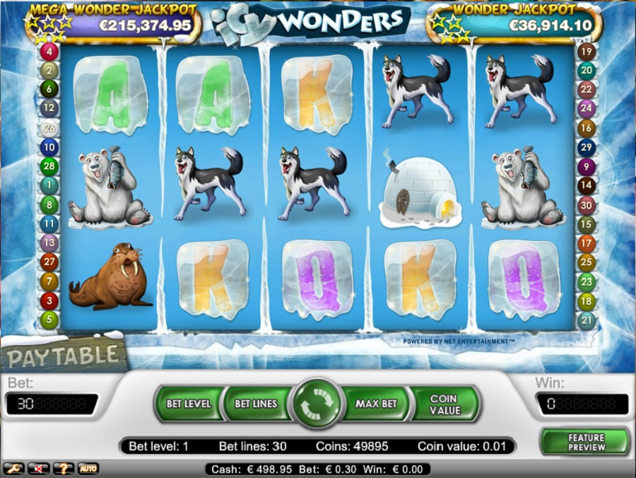 Automaty gry Icy Wonders