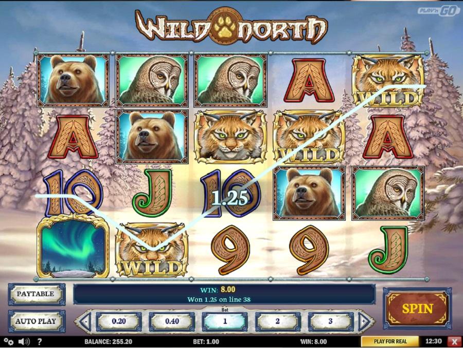 Hrací automat Wild North