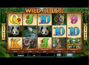 Výherní automaty Wild Orient