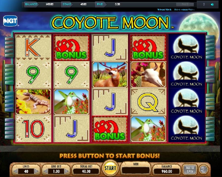 Automaty Coyote Moon