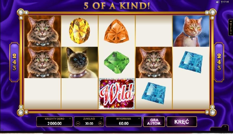 Pretty Kitty slotowe gry