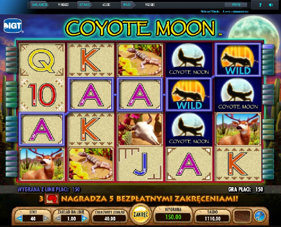 Slotowe gry Coyote Moon
