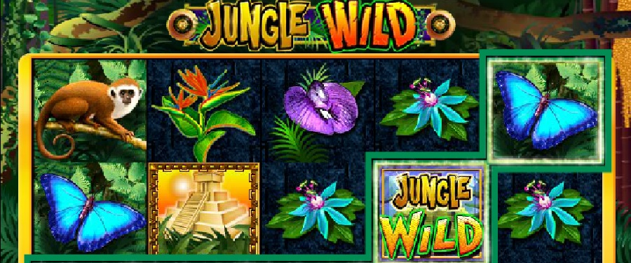 Jungle wild automaty do gry