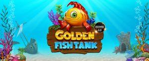 Mr Green's Magic Fish Tank