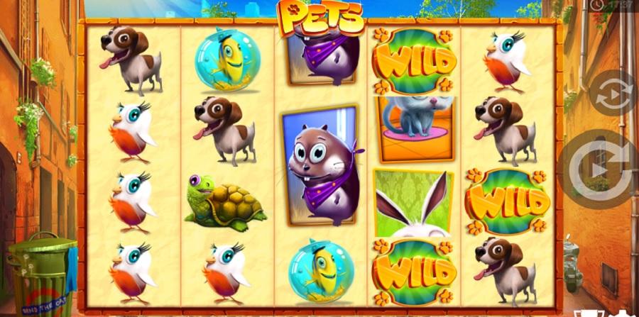 Hrací Automat Pets