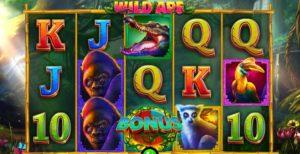 Video Automat Wild Ape