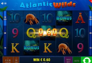 Video Automat Atlantic Wilds